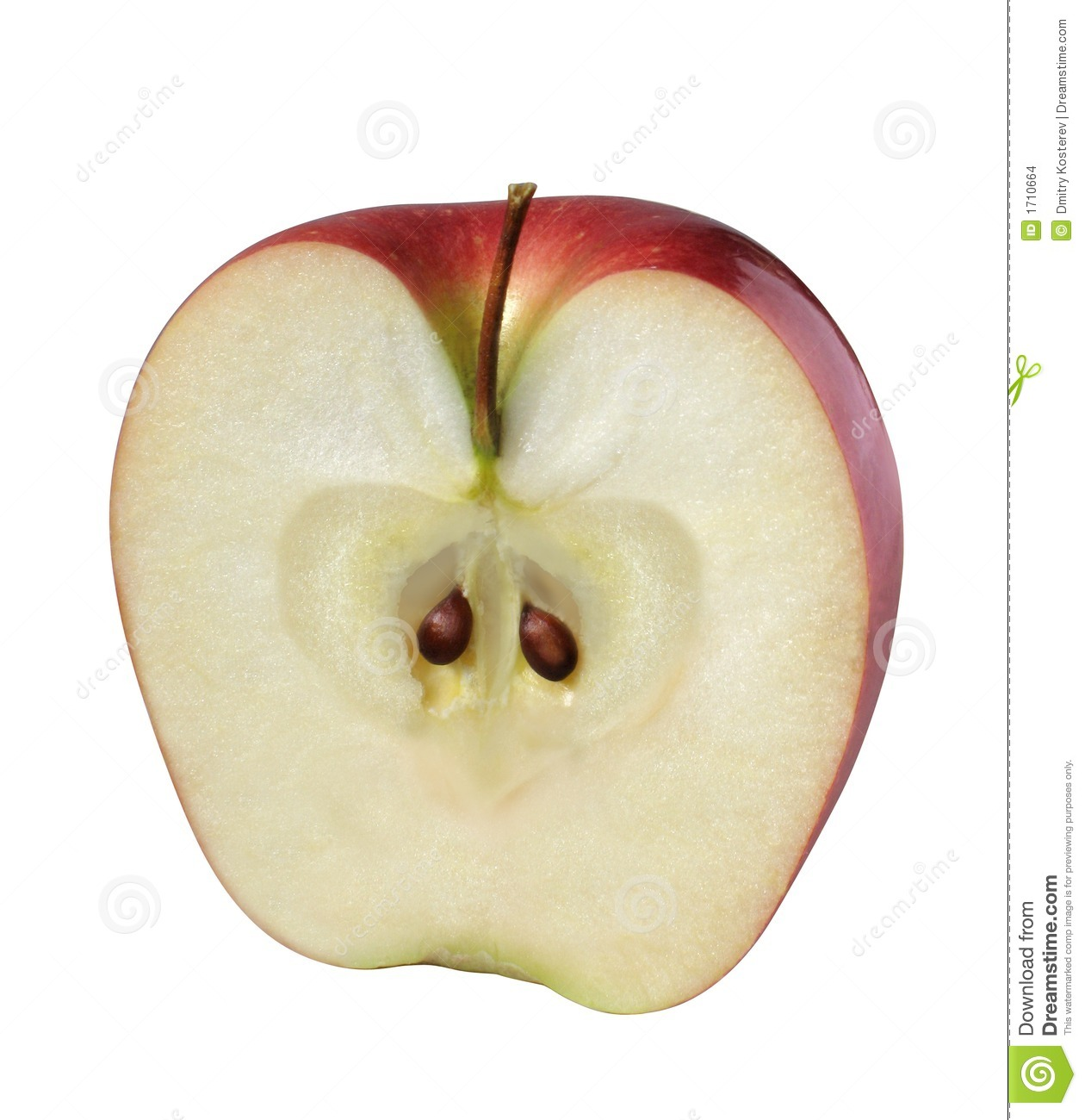 half red apple clipart clipart suggest Apple Core Coloring Apple Core Coloring