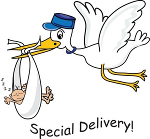 Stork Clipart Image   Special Delivery Cartoon Showing A Stork