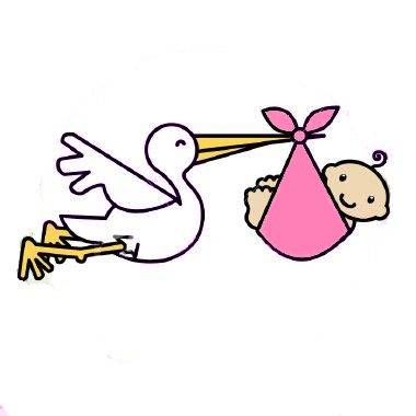 Stork With A Baby   Clipart Best