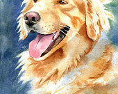 Golden Retriever Painting Dog Portrait Art Original Watercolor Art Pet
