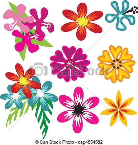 Hawaiian Flowers   A Set Of Beautiful    Csp4854582   Search Clipart