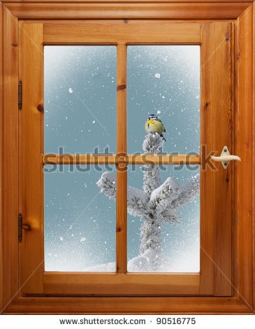 Bird On Tree In Snowfall Outside The Window   Stock Photo