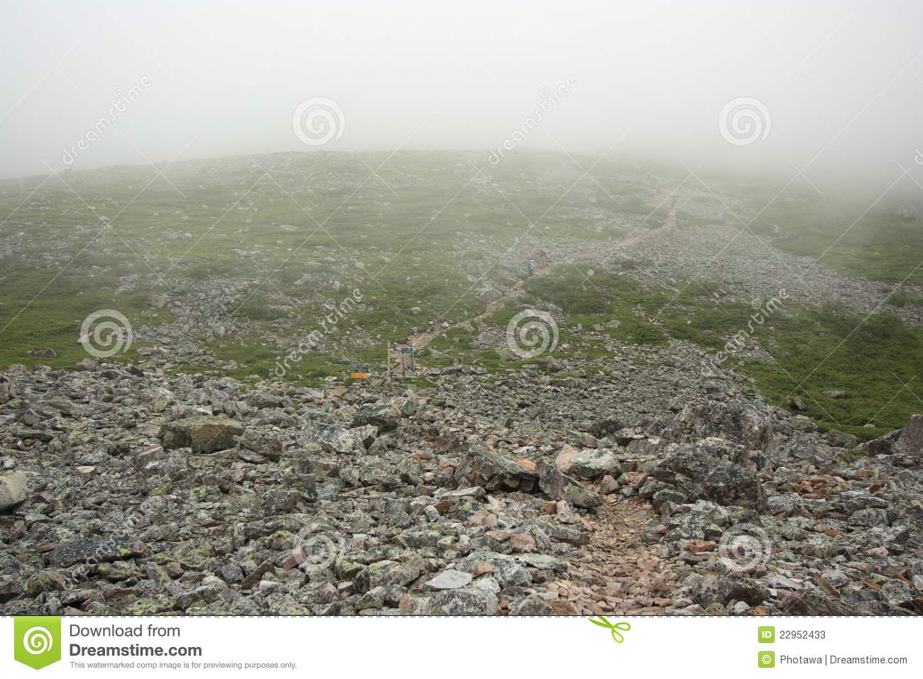 Trail And Fog On Gros Morne Mountain Stock Photos   Image  22952433