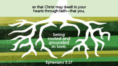 Faith That You Being Rooted And Grounded In Love   Biblia Com