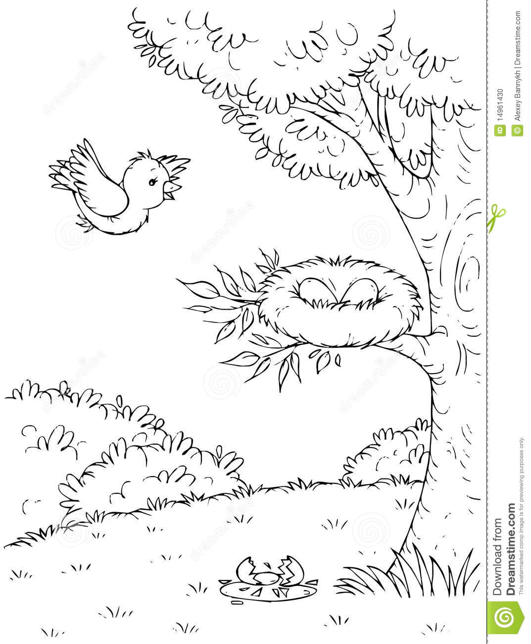 Black And White Illustration  Coloring Page   Bird Flying To A Nest