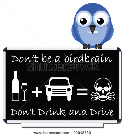 Do Not Be A Birdbrain Drink And Drive Message   Stock Photo