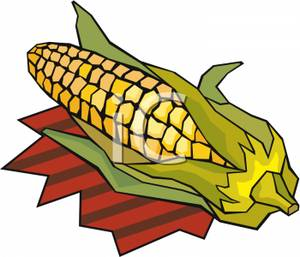 Without Of Corn Cobs Clipart - Clipart Kid