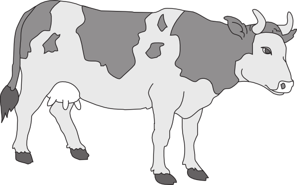 Gray Colored Cow Svg Downloads   Animal   Download Vector Clip Art