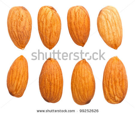 almond nutfree logo clipart clipart suggest