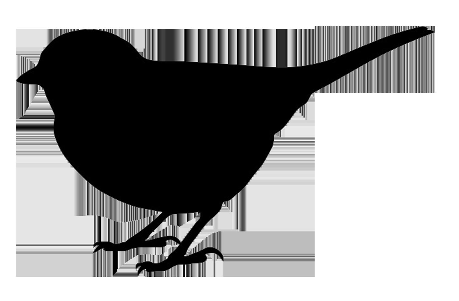 Love bird silhouette