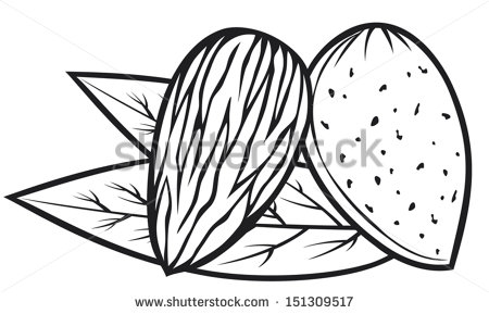 Nut Free Stock Photos Illustrations And Vector Art