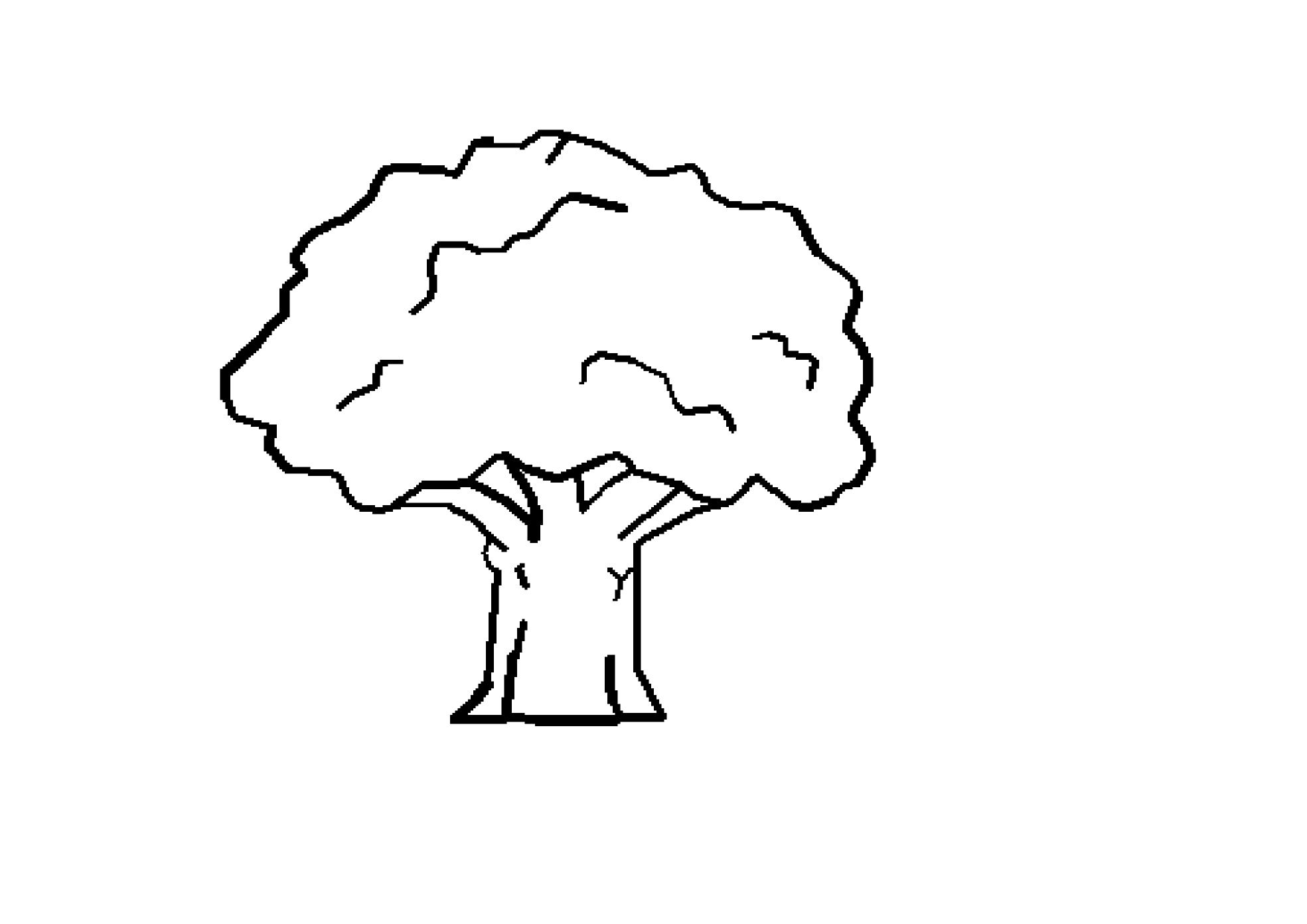Clipart mango tree black and white