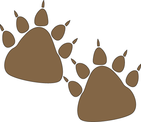 Bear Paw Prints Clip Art   Bear Paw Prints Image