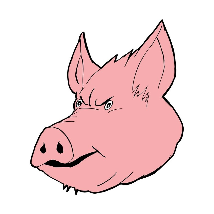 Line Drawing Of A Pig Face : Pig face clipart suggest