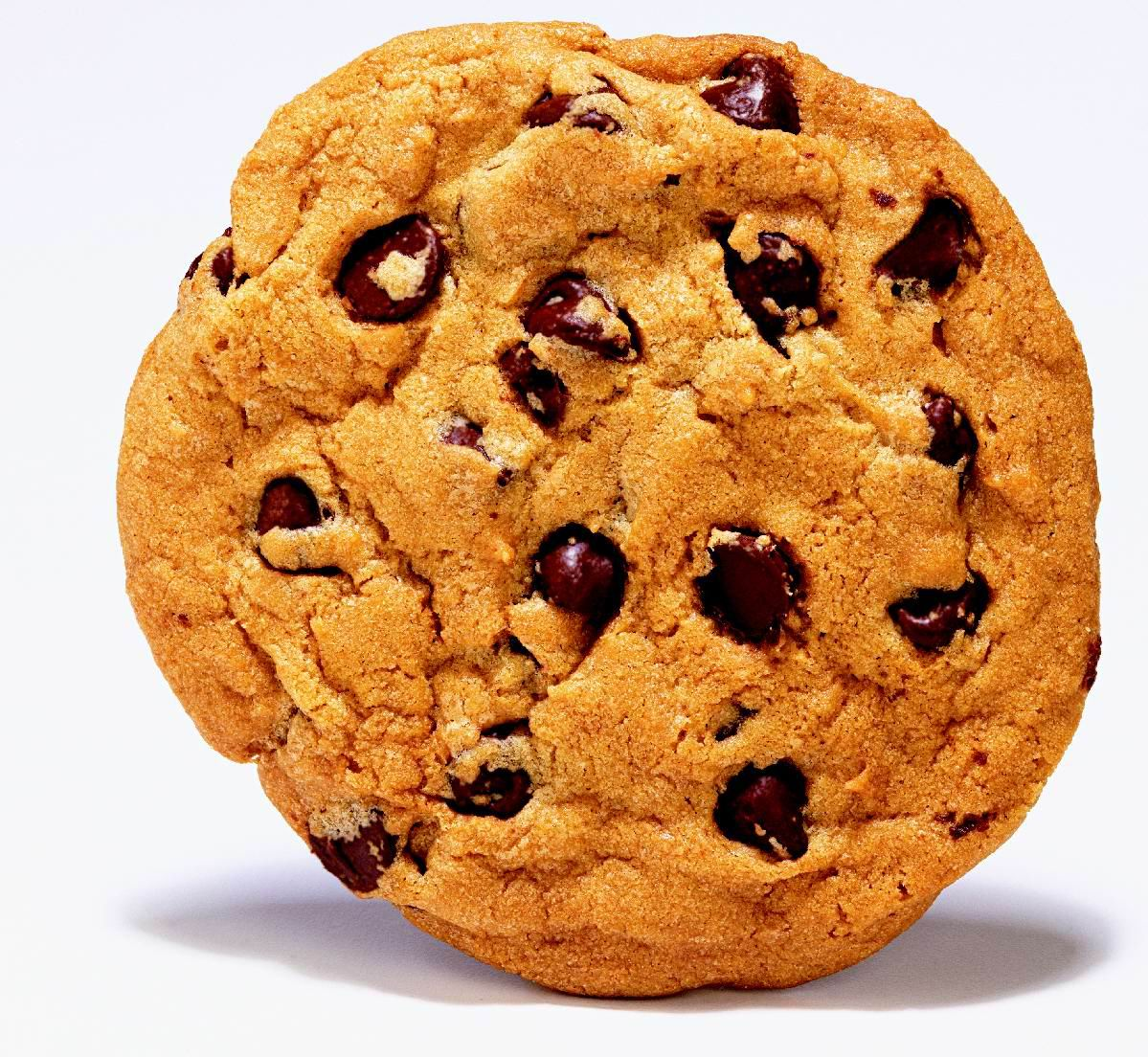 Chocolate Chip Cookie   Free Images At Clker Com   Vector Clip Art