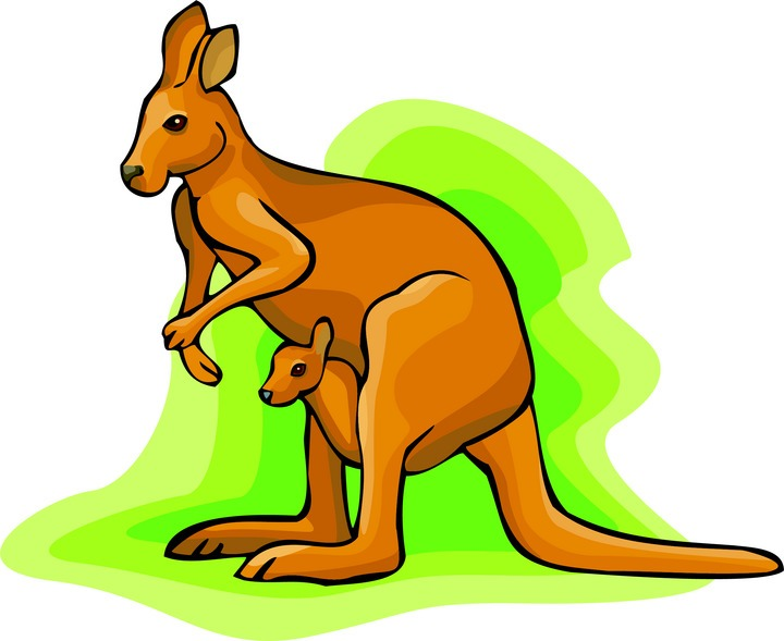 Clip Art Kangaroo Clip Art kangaroo clipart kid clipart