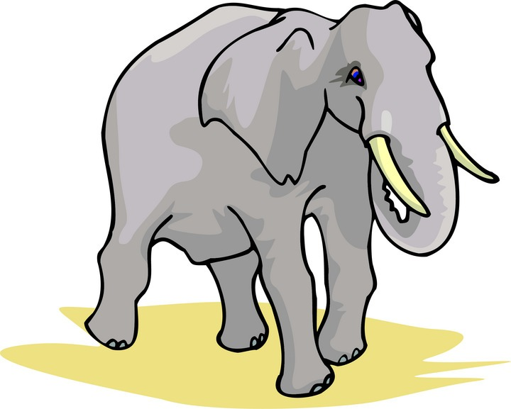 clipart of elephant ears - photo #14