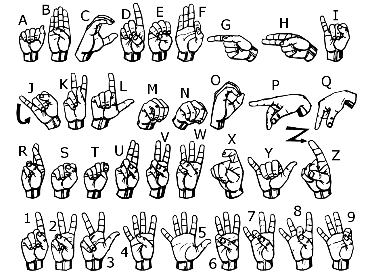 Sign Language Alphabet   Asl   Learnsigns