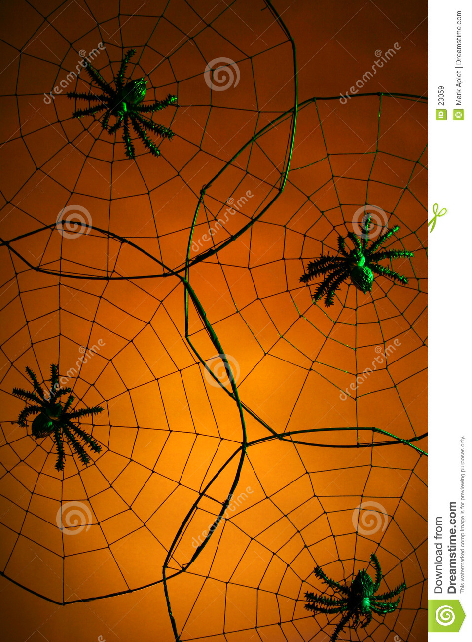 Creepy Spiders Royalty Free Stock Images   Image  23059