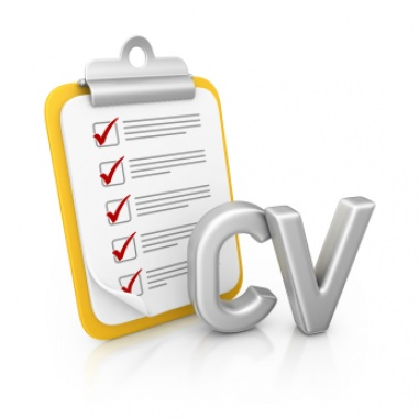 Write Your Own Cv At Vivacity