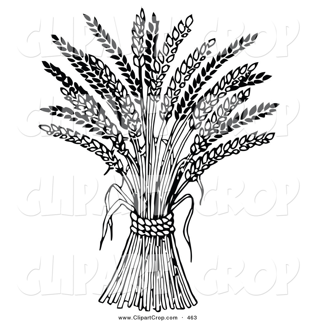 wheat harvest black and white clipart clipart suggest