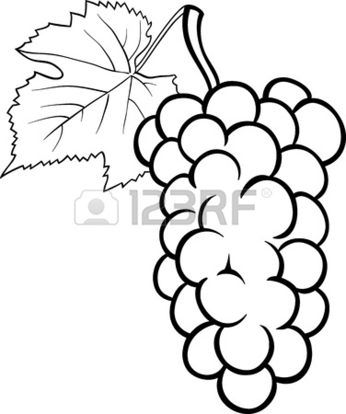fruit and vegetable black and white clipart clipart suggest