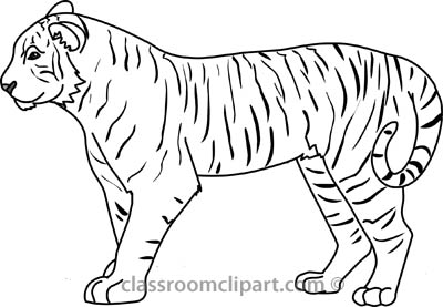 Clip Art Tiger Clipart Black And White tiger black and white clipart kid free animals outline clip art pictures