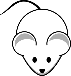 Mouse Clipart Black And White   Hvgj