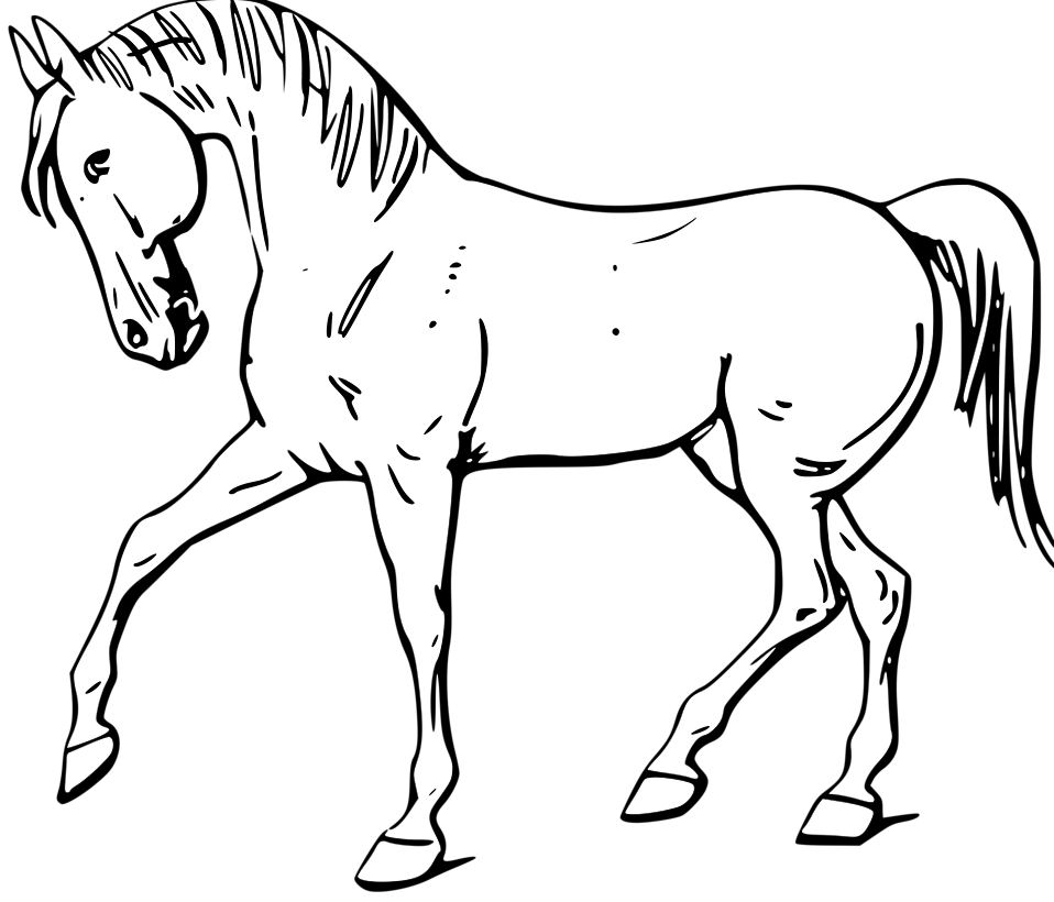 Photo Illustration Of A Walking Horse In Black And White 11455 Running Horse Png