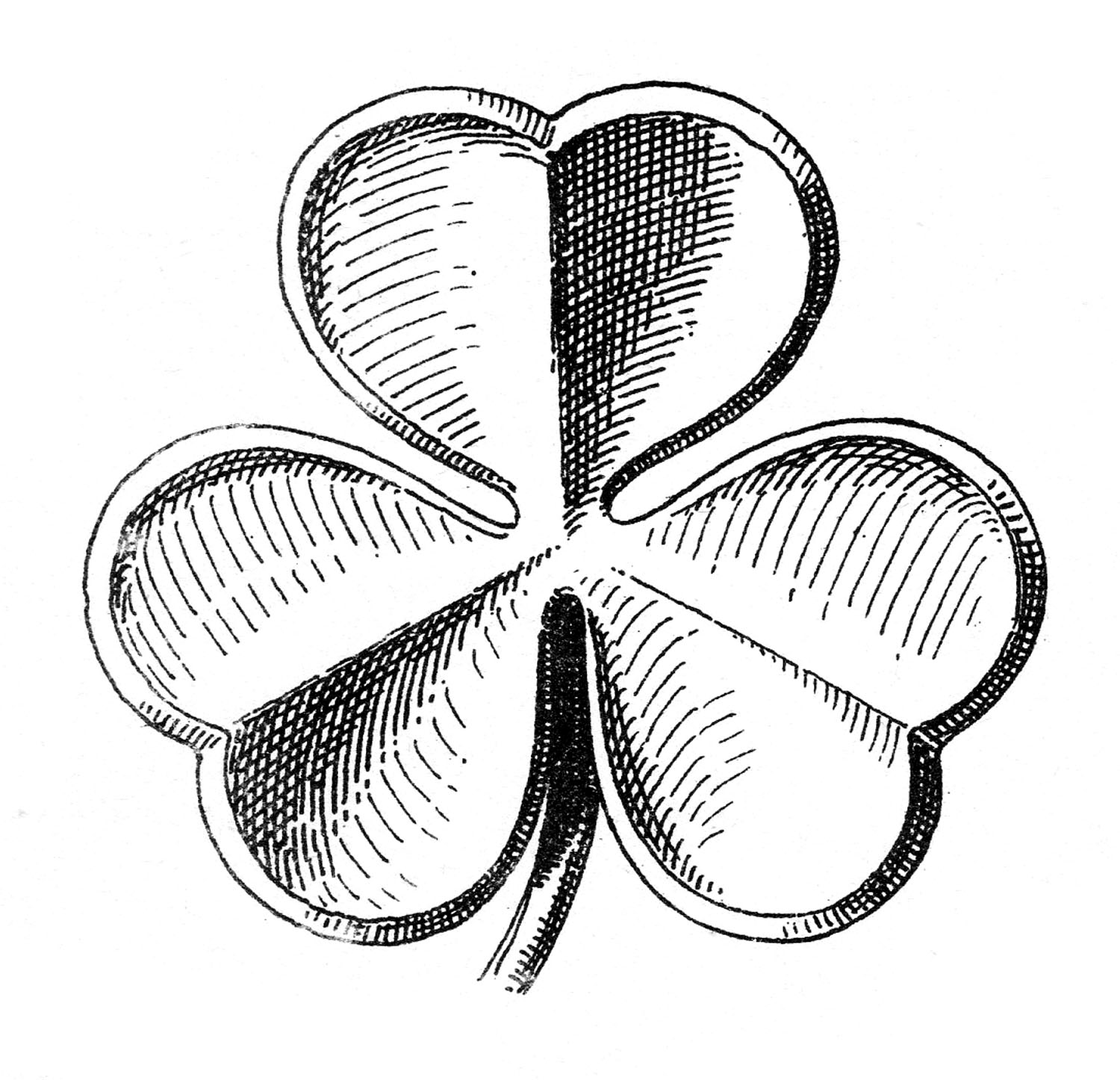 Public Domain Clip Art   Shamrocks   St  Patrick S Day   The Graphics