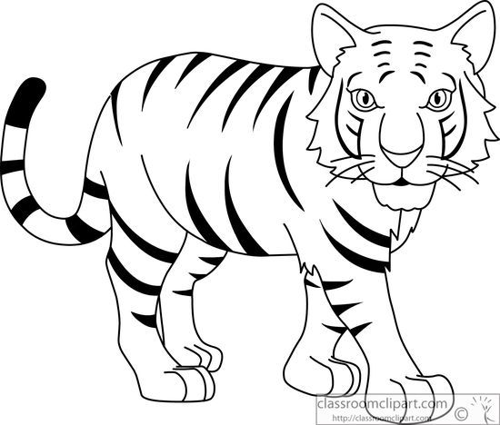 Stripped Bengal Tiger Black White Outline 914   Classroom Clipart