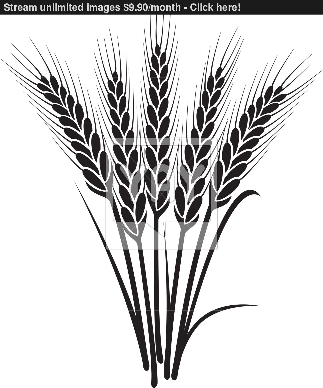 Wheat Black And White Clipart - Clipart Suggest