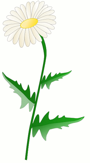 Daisy Flower Clip Art Black And White   Clipart Panda   Free Clipart