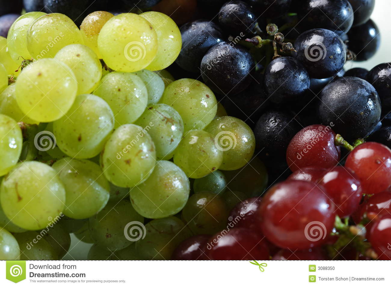 Three Grape Varieties Stock Photo   Image  3088350
