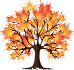 Asian Fall Tree Clipart   Cliparthut   Free Clipart