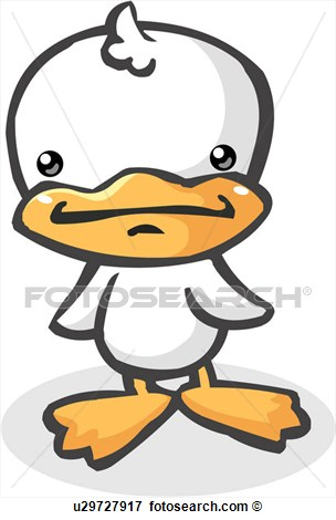 Duckling Bill Beak Drake Webfoot Duck U29727917   Search Clipart