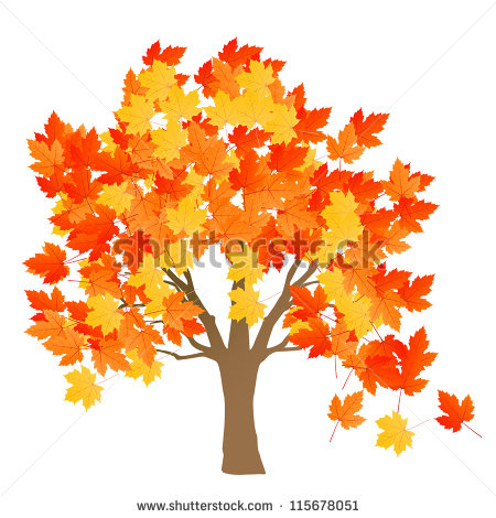 Maple Tree Autumn Leaves Background Vector   115678051   Shutterstock