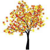 Maple Tree Clip Art Illustrations  5340 Maple Tree Clipart Eps Vector
