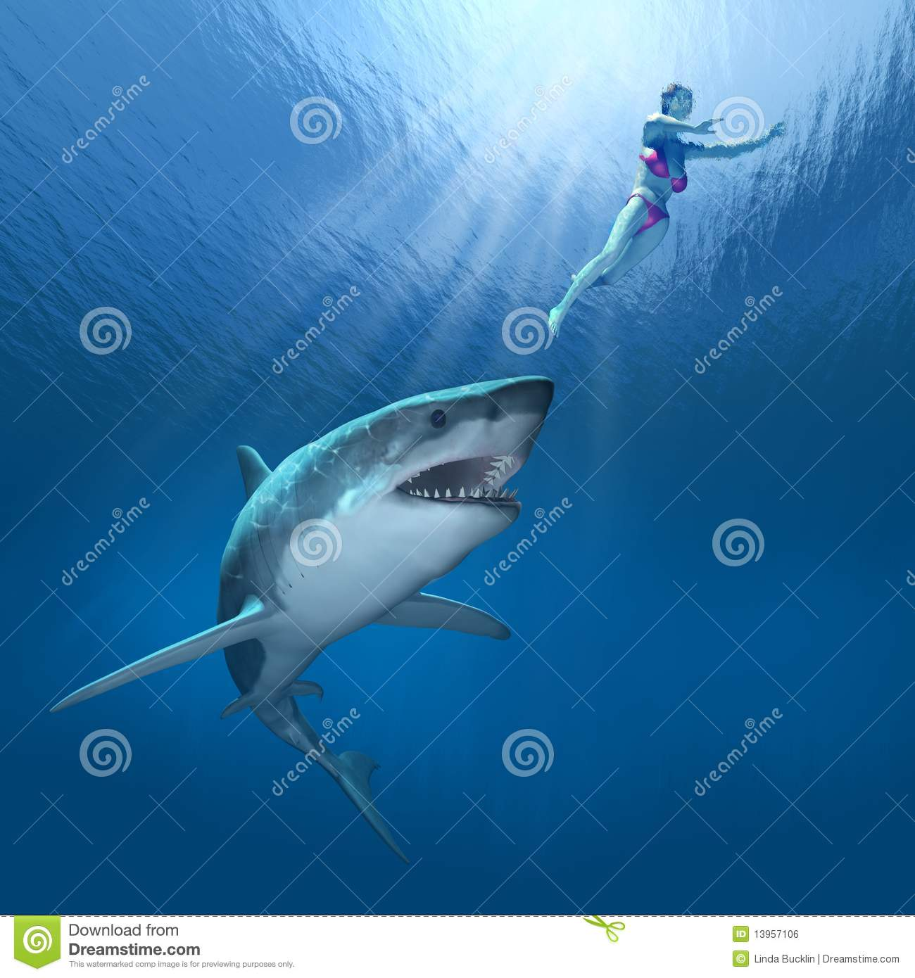 Акула откусила пенис 6 фотография