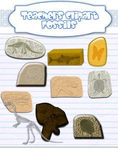 Teach Clip Art Gen Scienc Teacher Clipart Fossils Scienc Graphic