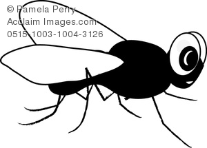 Clip Art Image Of A Cartoon House Fly In Black And White   Acclaim
