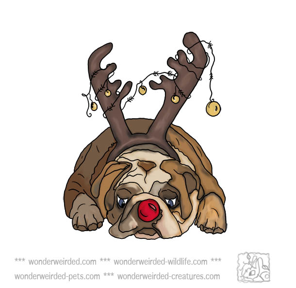 Dog Christmas Clipart Bull Dog Picturesecho S Original Dog Christmas