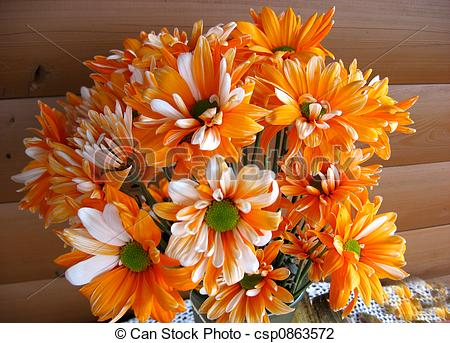 Stock Photo Of Fall Flowers   Orange And White Button Mums In Floral