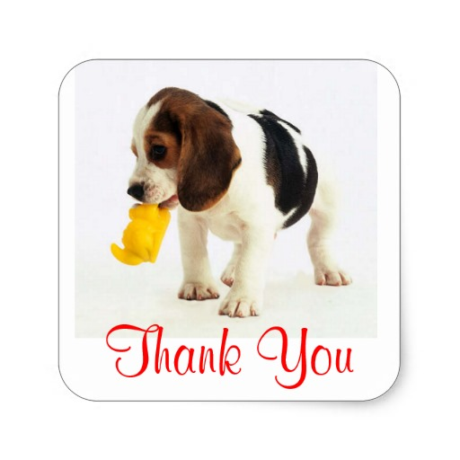 Thank You Images With Dogs | www.imgarcade.com - Online Image Arcade!