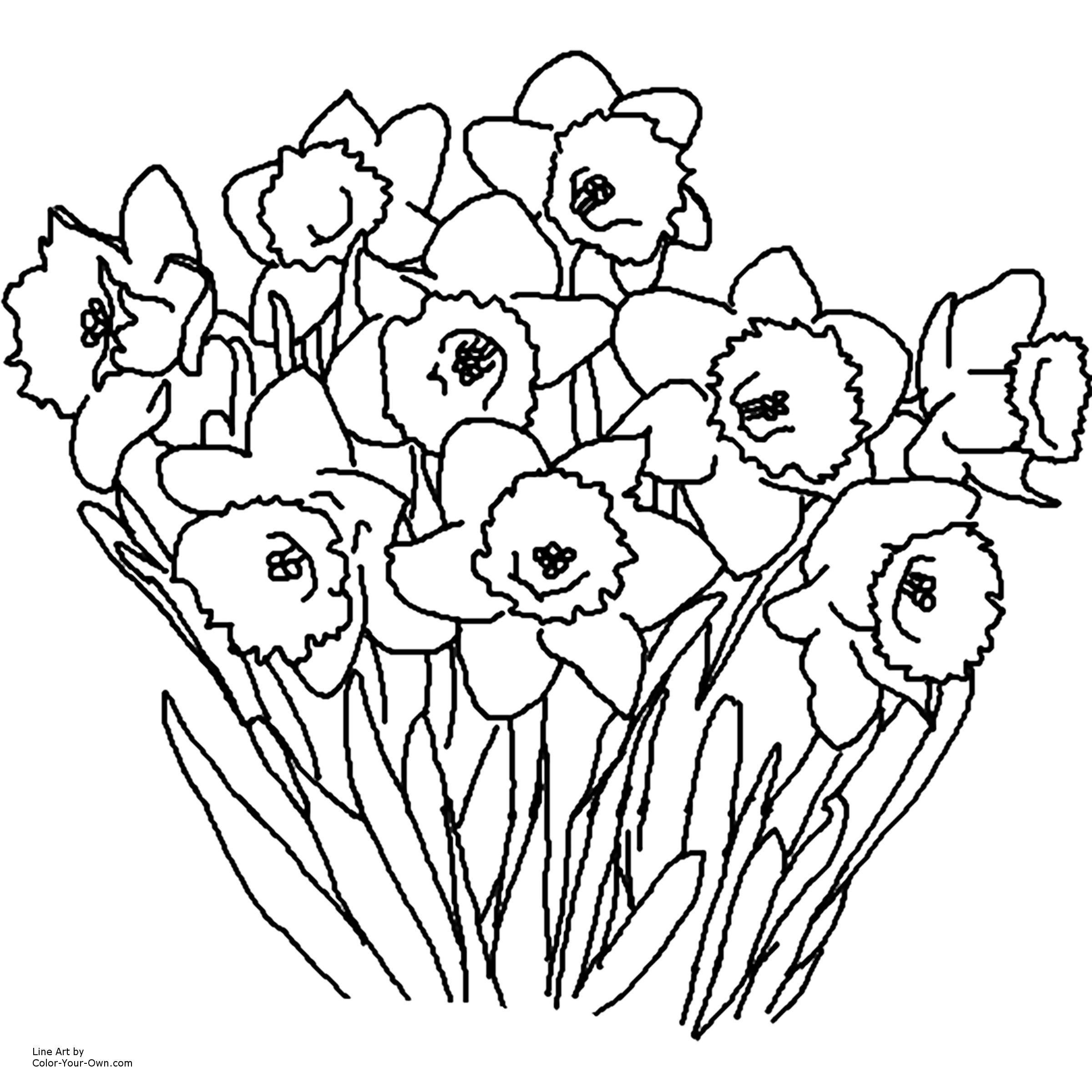 Free Printable Coloring Pages Of Flower   Dynasty