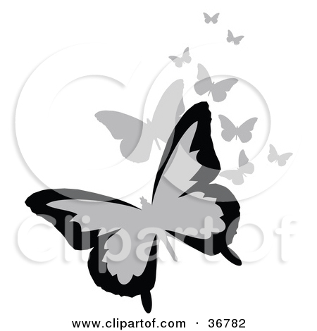 Royalty Free Illustrations Of Butterflies By Onfocusmedia  1