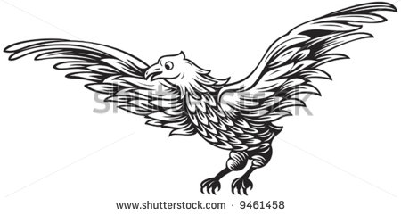 Black And White Drawing Of Flying Eagle Stock Vector Illustration