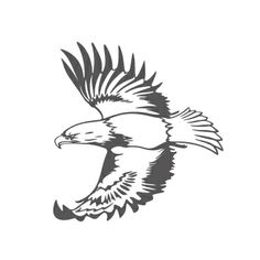 Eagles On Pinterest   Eagle Tattoos Eagle Wing Tattoos And Wings