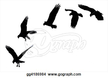 Showing A Bird Of Prey Soaring And Striking   Clip Art Gg4186984
