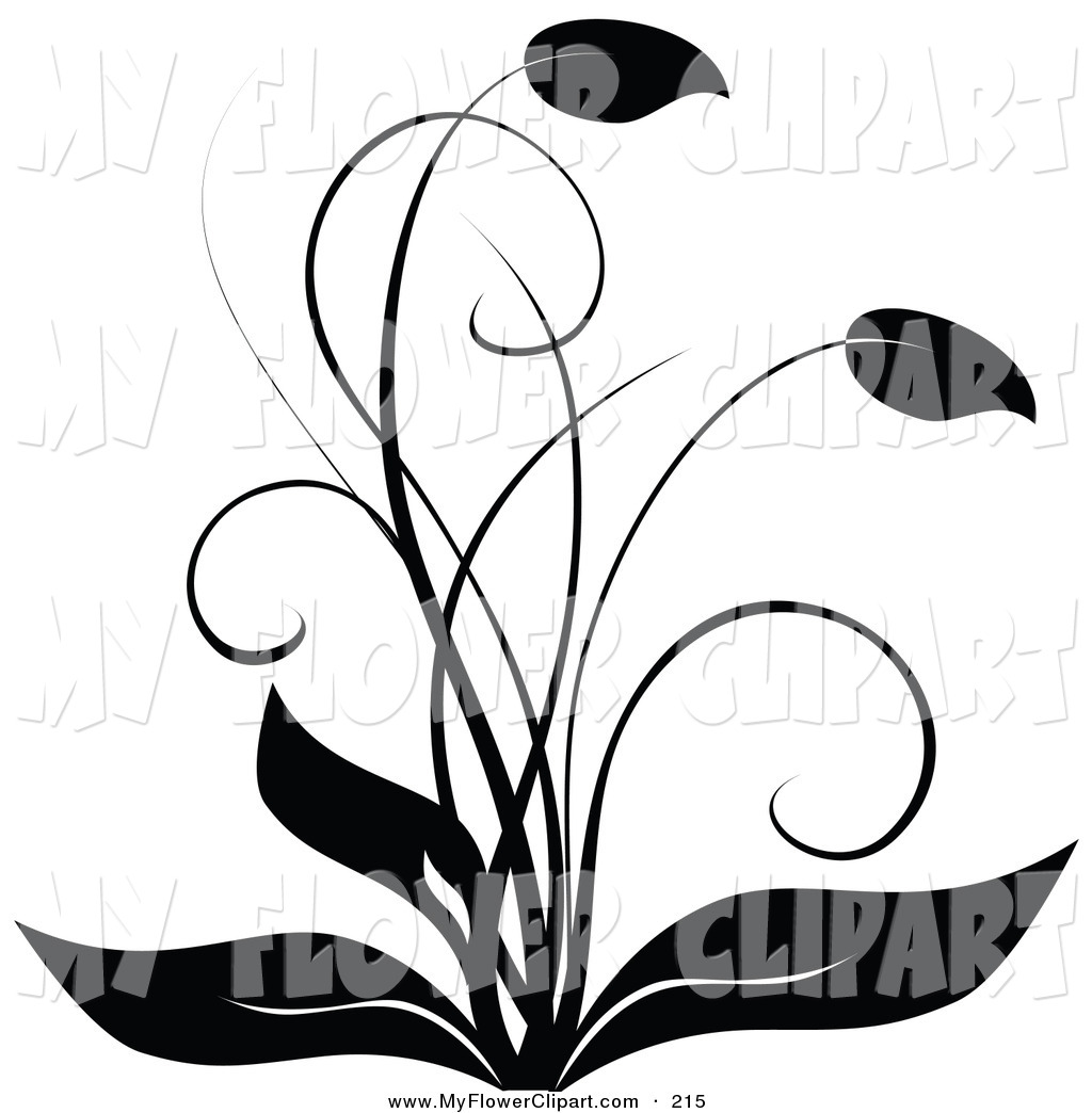 Black And White Birthday Clip Art Free Black And White Flower Clip